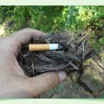 Nácvik rozfúkania hniezda z vajgla