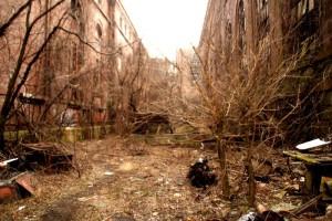 Urban survival 1_800x534