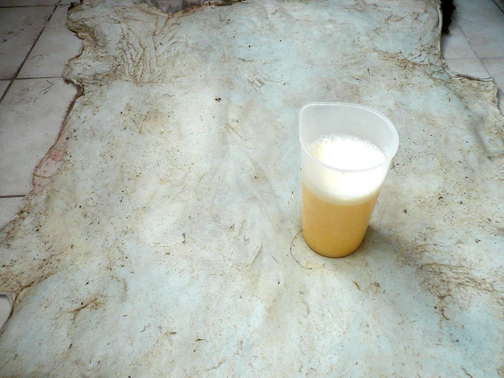 11_Mastenie kožušiny z emulziou vody a vaječného žĺtku
